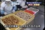 06年03月17日08時00分-[S]朝は楽しく! 秋葉原新グルメスポッ-テレビ東京49.jpg