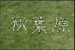 06年09月24日20時00分-[新]Tokyo物語「秋葉原」市川実日子-MXテレビ00.jpg